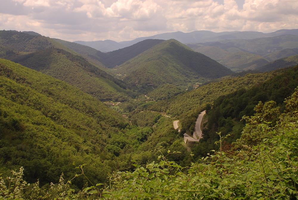 Montagnes verdoyantes lors d'un séjour multi activités rando ânes loin de la foule du chemin de Stevenson. rando âne en famille loin de la foule du chemin de Stevenson