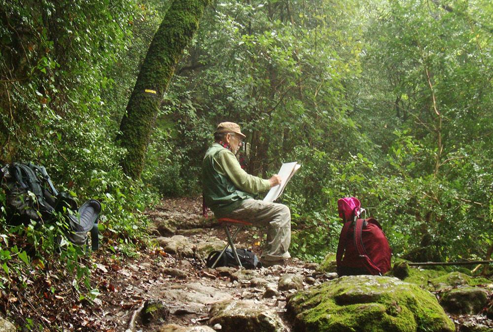 Un dessinateur posé sur un petit siège est en train de croquer une cascade entouré par une for^zet dense et mouillée, on se croirait dans la jungle