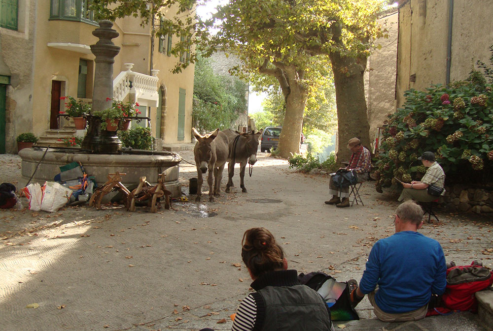 Session croquis sur la place de la fontaine du village d'Aumessas avec nos ânes, les platanes...