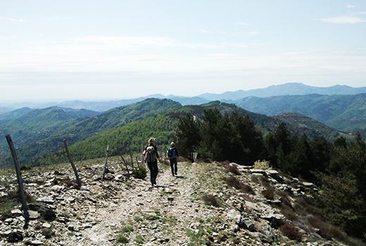 Séjour randonnée et méditation en Cévennes randonnée meditation