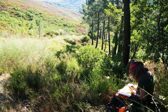 Voyageuse en train de dessiner dans le Parc national du Peneda geres