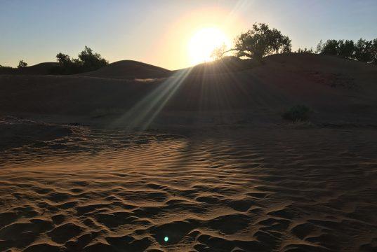 yoga desert 2017 4