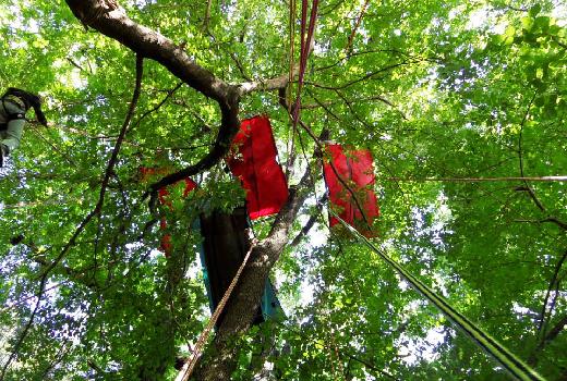 Des portaledges sont suspendus dans les arbres, là où les enfants vont passer la nuit