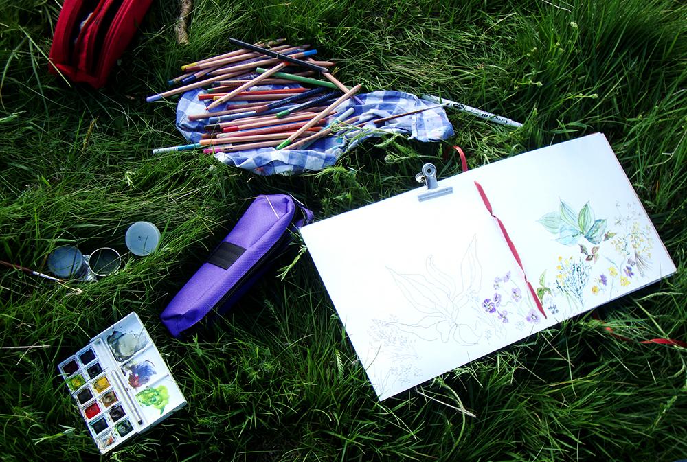 dans l'herbe, un carnet de croquis, une boite d'aquarelle, des crayons de couleur. sur le carnet apparaît petit à petit un croquis de plantes