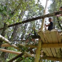 des enfants construisent une cabane dans les arbres durant leur séjour autour de la thématique de la préhistoire